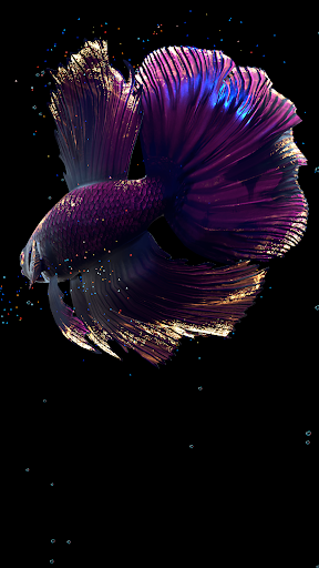 Betta Fish Live Wallpaper FREE 1.4 Screenshots 14