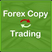 Forex copy trading Forex social trading Algo trade