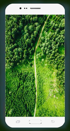 Forest Wallpaper HD Screenshots 8