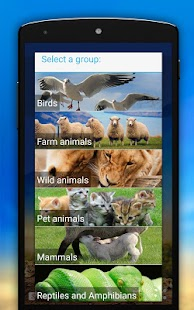 Animal Sounds Screenshot