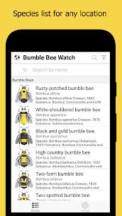 Bumble Apk Download –Bumble Apk 2021 – New 2021* 1