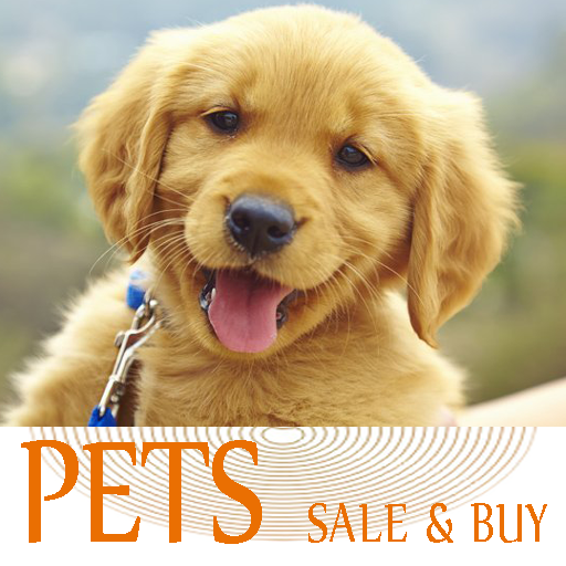 Pets For Sale – Animals, Puppies, Dogs For Sale