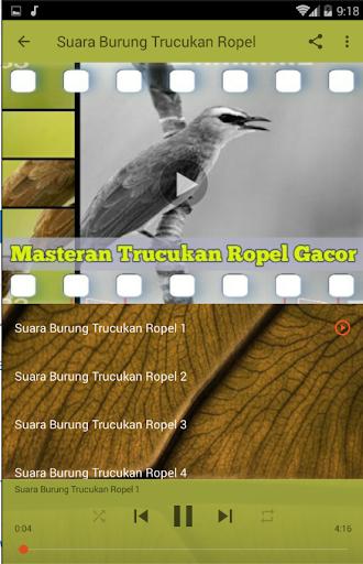 Masteran Trucukan Ropel Gacor Download Apk Free For Android Apktume Com