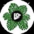 Leaf Video Slideshow-Photo Video Slideshow Maker