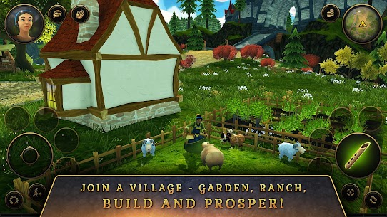 3D MMO Villagers & Heroes 5