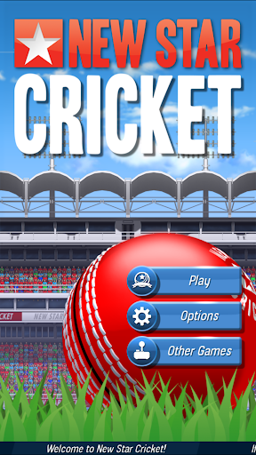 New Star: Cricket 1.19 pic 1