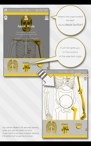 Enjoy Learning Anatomy puzzle 3.2.3 screenshots 13