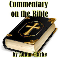 Commentary on the Bible