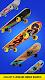 screenshot of Flip Skater