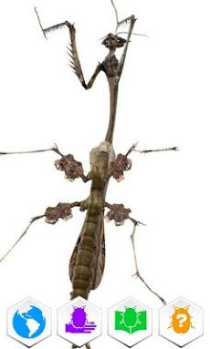 巨虫図鑑のおすすめ画像4