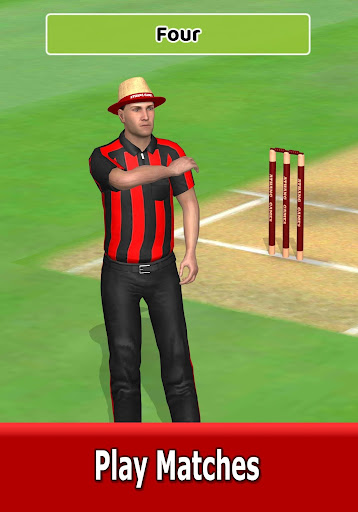 Cricket World Domination - a cricket game for all 1.2.2 screenshots 9