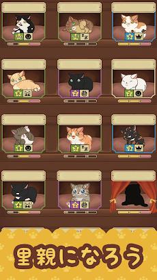 ファリスタズ 猫カフェのおすすめ画像2