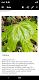 screenshot of Notepad App