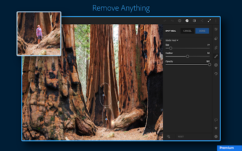 Adobe Lightroom – Photo Editor & Pro Camera MOD APK 6.2.1 (PREMIUM Unlocked) 13