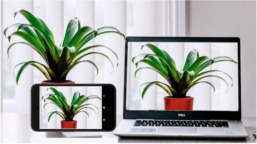 Iriun 4K Webcam for PC and Mac  Screenshots 2