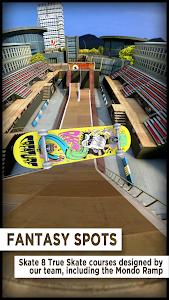 True Skate 1.5.38 (Mod Money)