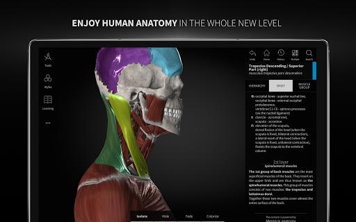 Anatomyka - 3D Human Anatomy Atlas 2.1.5 Screenshots 19