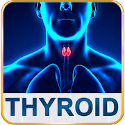 Thyroid Help & Foods Diet Tips for High & Low TFT