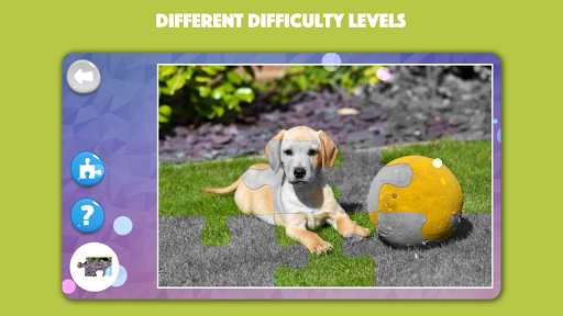 Dogs & Cats Puzzles for kids & toddlers 2 ud83dudc31ud83dudc29 2021.44 screenshots 4