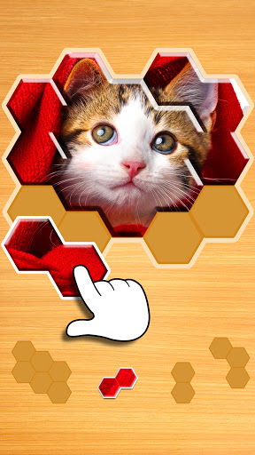 Jigsaw Puzzles Hexa 🧩🔥🎯 2.2.9 screenshots 1