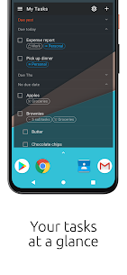 Tasks.org Pro : Open-source To-Do Lists & Reminders MOD APK 4
