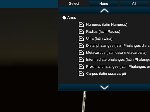 Osseous System in 3D (Anatomy) 2.0.3 Screenshots 19