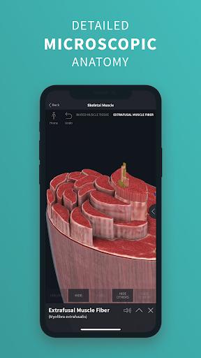 Complete Anatomy u201821 - 3D Human Body Atlas 6.4.0 Screenshots 4