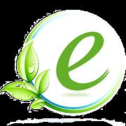 E-Services Pakistan