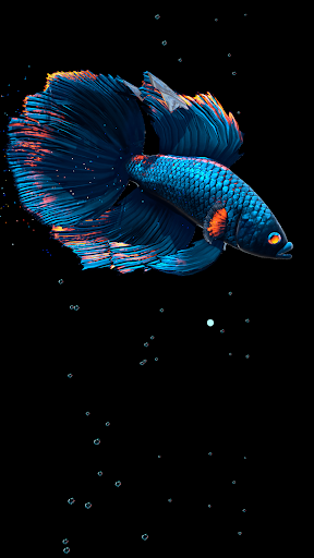 Betta Fish Live Wallpaper FREE 1.4 Screenshots 15