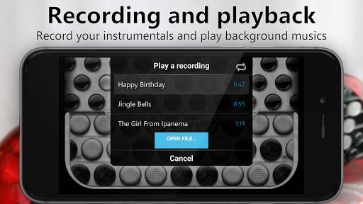 Accordion Chromatic Button 2.4 screenshots 3
