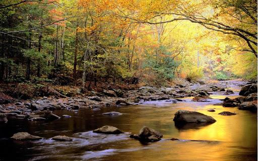 National Park Jigsaw Puzzles  screenshots 3
