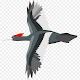 Flying Bird – free adventure game! per PC Windows