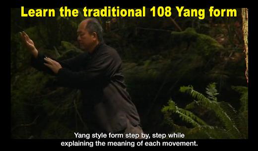 Yang Tai Chi for Beginners 2&3 by Dr. Yang Mod Apk (Full Unlocked) 4