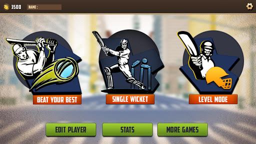 Street Cricket Games: Gully Cricket Sports Match 4 screenshots 4