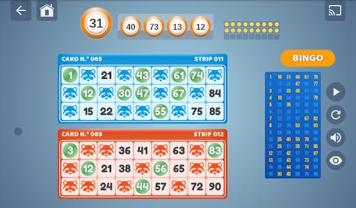 Bingo Set  screenshots 13