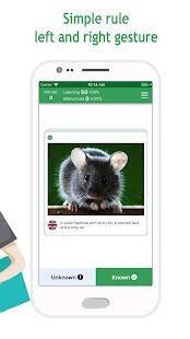 Anki Flashcards (Anki App English)