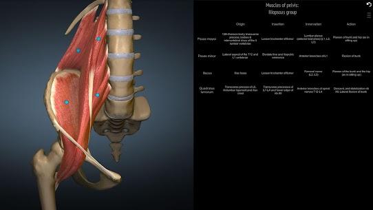 Anatomy Learning – 3D Anatomy Atlas 5