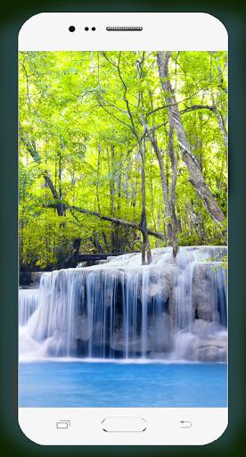 Forest Wallpaper HD Screenshots 9