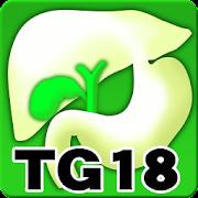 Tokyo Guidelines (TG18)