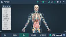 人体 (男)インタラクティブな教育用3Dのおすすめ画像4