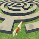 Pony Horse Maze Run Challenge - Free Pony Games para PC Windows