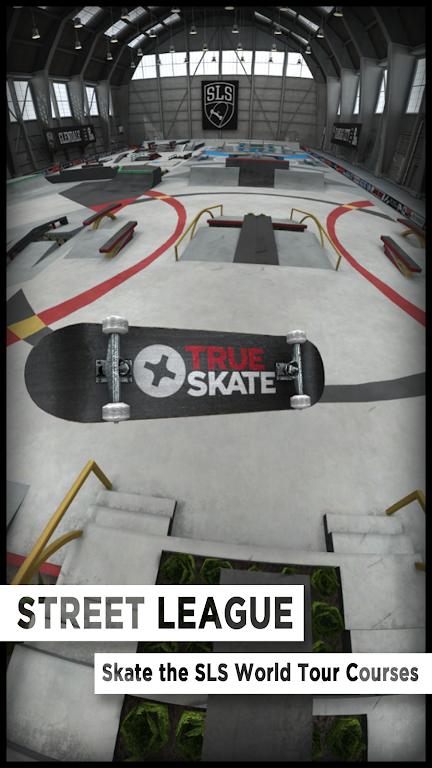 True Skate  poster 0