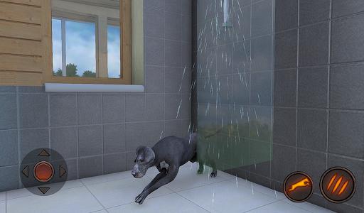 Great Dane Dog Simulator 1.1.0 screenshots 9