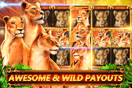 Slots FREE: Great Cat App Download For Pc (Windows/mac Os) 2