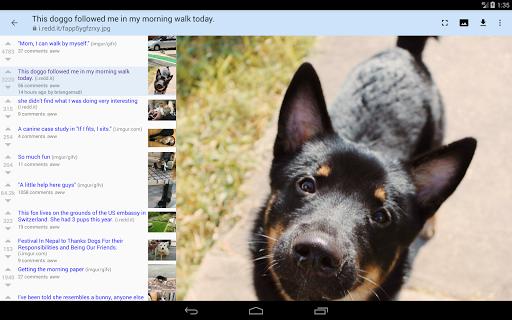 rif is fun golden platinum for Reddit android2mod screenshots 9