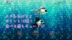 きんぎょフレンズ 放置育成ゲームのおすすめ画像2