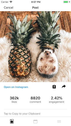Foto do Feed Preview for Instagram