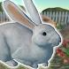 うさぎといっしょ - 癒し系放置育成ゲーム - Androidアプリ
