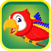 Learn Birds Name - Birds Picture & Sound