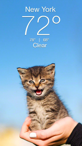 Weather Kitty - App & Widget Weather Forecast  screenshots 1